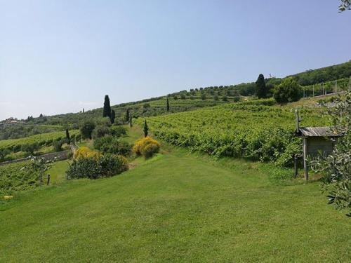 Panorama-Costa-degli-Ulivi-Verona
