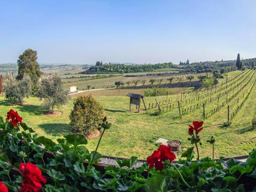 Vista-Costa-degli-Ulivi-Valpolicella-Verona